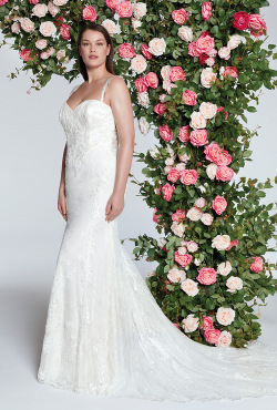 Sincerity_Blush-Bridal_Feb20209
